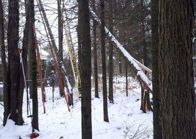 Élagage d'arbre en hiver Lanaudière - Abattage arbre Expert (émondeur Lanaudière)