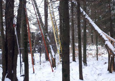 Coupe arbre en hiver Lanaudière - Abattage arbre Expert (émondeur Lanaudière)